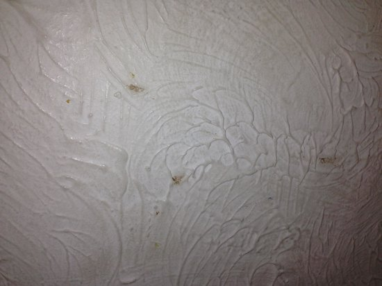 Ashling Tara Hotel: Food splatter on our wall by my bed