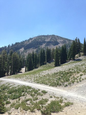 Mammoth Mountain Bike Park: Brake Through