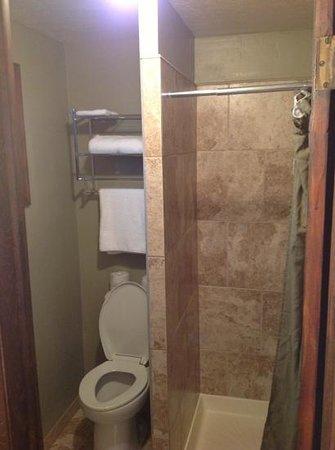 Evergreen Motel: Bagno con doccia