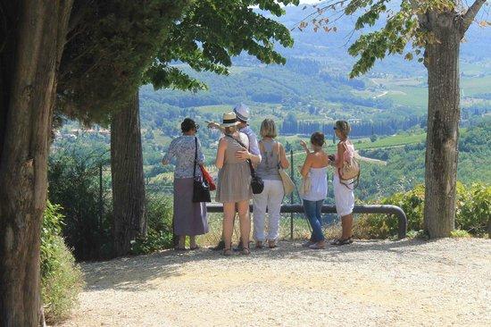 Castello Vicchiomaggio: Carissimi, guardate che panorama!