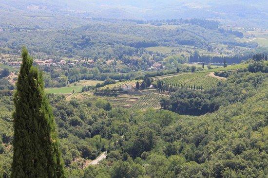 Castello Vicchiomaggio : Panorama mozzafiato.