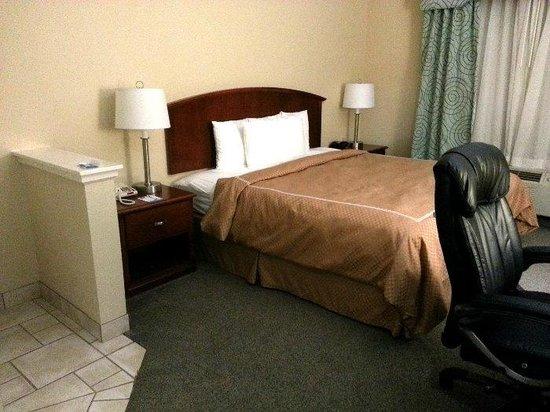 Comfort Suites NW Lakeline: Overview of Room