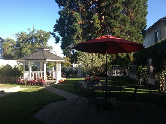 Arbor Guest House: Part of the backyard