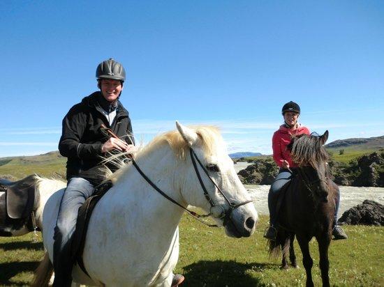 Nupshestar: Beautiful horses