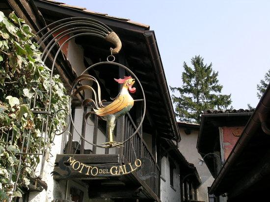 Motto del Gallo