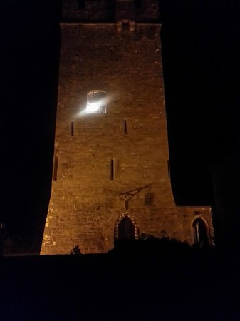 Ballyhannon Castle: Stunning at night