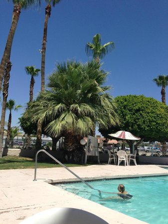 Knight Inn And Suites Yuma: Pool Area