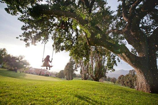 Ojai Valley Inn : Historic, centuries-old Oak trees dot the property surrounding the Inn