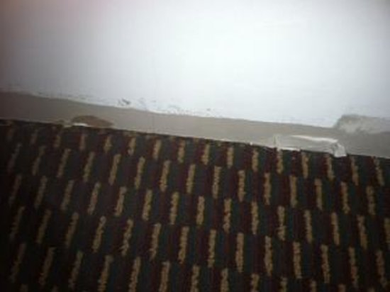 Quality Inn & Suites North: Missing floor molding behind curtains