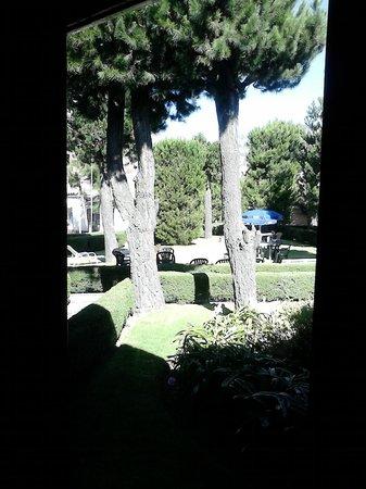 Hotel Colomba : jardines