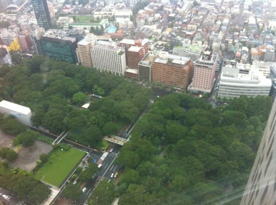 Shinjuku New City Hotel: vue depuis l'hôtel de ville