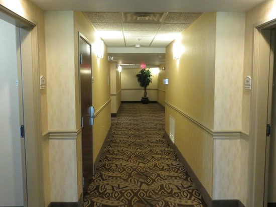 Holiday Inn Express Hotel & Suites Lexington Northeast : Hallway.