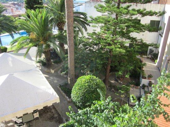 Hotel Antiga: Zona verde