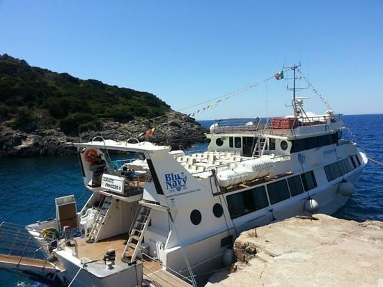 Castiglione Della Pescaia, İtalya: la barca Blu Navy