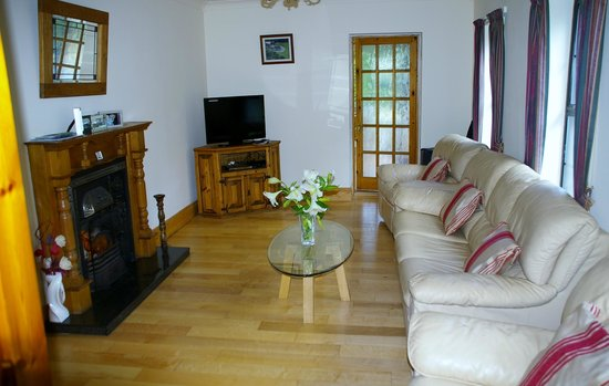 Carriglen B&B : Lounge Room