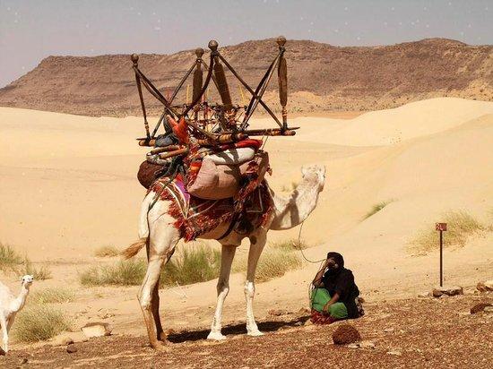 Mauritania: mmmmmmmmmmlli