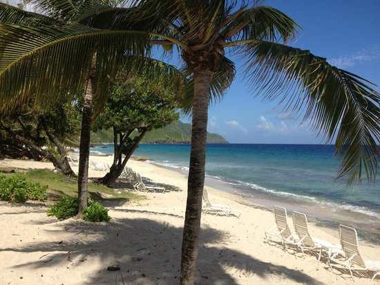 Renaissance St. Croix Carambola Beach Resort & Spa: Postcard