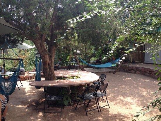 ChocolaTree: Outdoor area , complete with hammocks