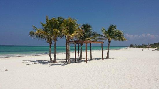 Secrets Maroma Beach Riviera Cancun La Plage