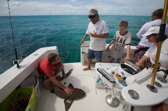 Islamorada Wide Open Sport Fishing