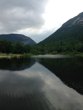Crawford Notch State Park : Pond at Willey House on a rainy day looking north.