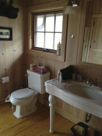 Retreat at TreeGap: The spacious bathroom