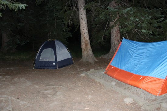 Bridge Bay Campground : Yellowstone Campground at Bay Bridge (one of 400 campsites)