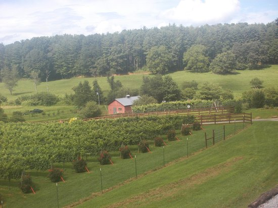 Stonewall Creek Vineyards: view from tasting room, Ask about the roses