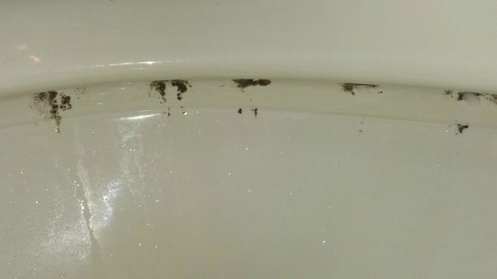 Bridges Bay Resort: Filthy toilet