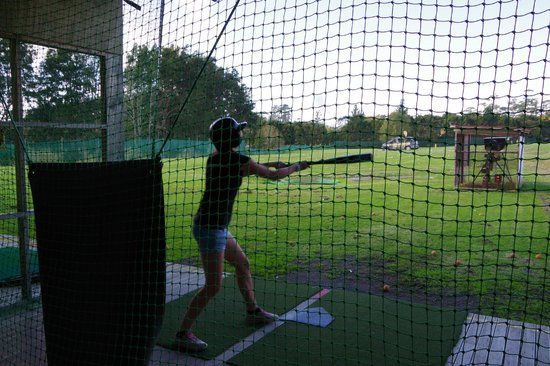 A Kiwi Farmstay : The range - baseball