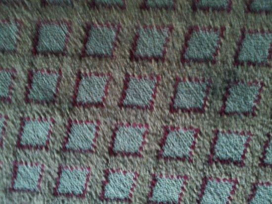 Days Inn Ann Arbor: black oil stains on room carpet