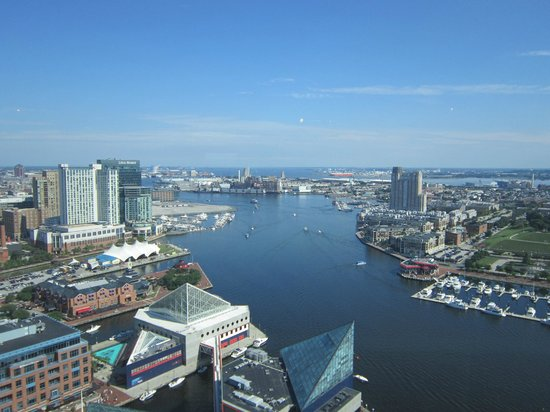 Top of the World Observation Level : Inner Harbor