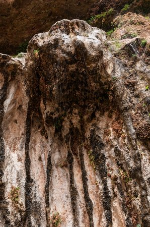 Weeping Rock Trail: Looking Up at the Weeping Rock and Hanging Garden