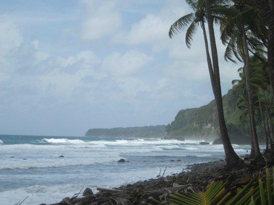 Rosalie Bay Resort: View from hotel