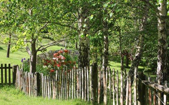 Retiro Park Lodge: The Garden