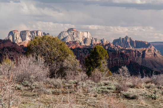 Kolob Terrace Road: Climbs Along the Sandstone Domes of Zion