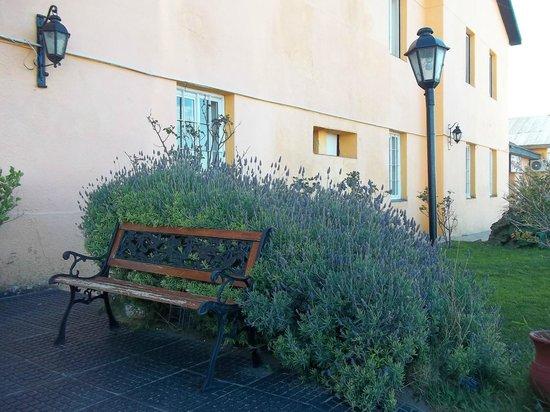 Hotel Playa: Jardín exterior