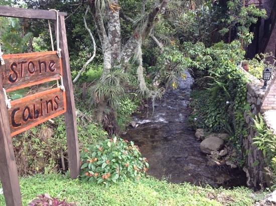 Stone Cabins Boquete: Una quebraba pasa a un lado