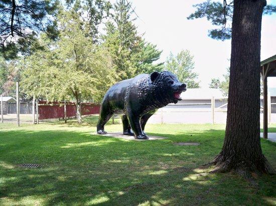 Wisconsin Deer Park : Bear statue