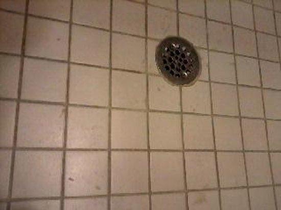 Hyatt Place Sacramento Roseville: dirty shower floor
