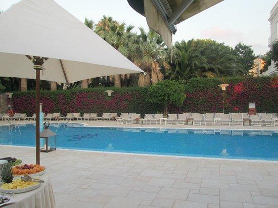 Hotel Mediterraneo Sorrento: Pool