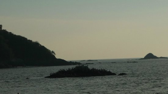 Manzanillo Bay: ISLOTE DE PAJAROS