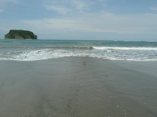 Villas Kalimba: Playa Sámara