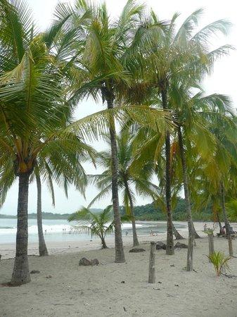 Villas Kalimba: Playa Carrillo