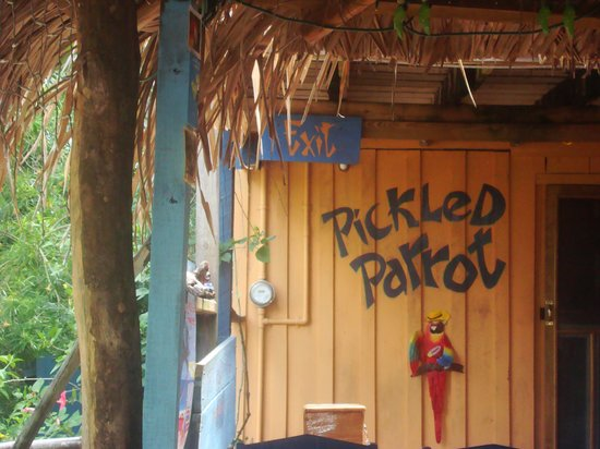 Mirasol Beach Apartment: The Pickled Parrot is just a short walk along the path between the sidewalk and the road.