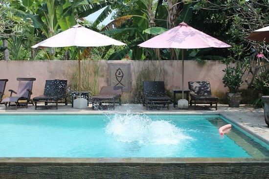 Hotel Melamun: бассейн