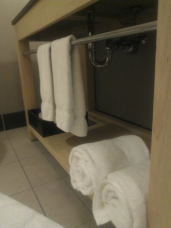 Cambria hotel & suites: Huge fluffy towels!!!!