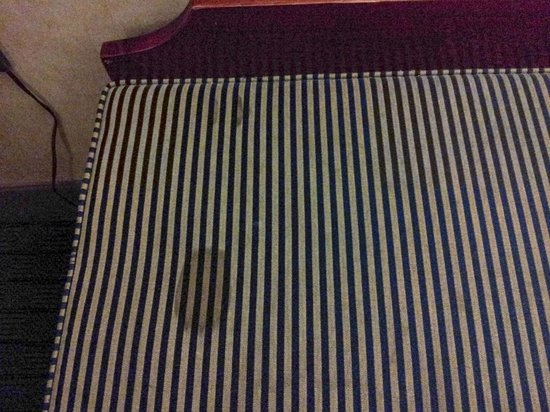 Quality Inn of Indy Castleton: Stained upholstry on suitcase stand