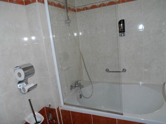 Hotel Prins Hendrik : bathroom