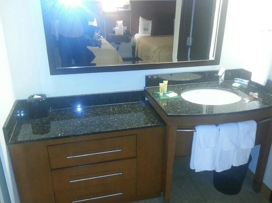 Hyatt Place Charlotte Airport/Lake Pointe: bathroom sink ( seperate from toliet)